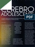 Cerebro Adolescente 1