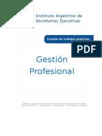 Gestión Profesional 2016