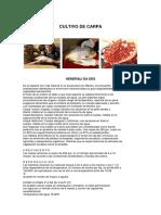 CULTIVO_CARPA2.pdf