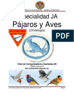 (2) Especialidad Ja-Ornitología (Pájaros y Aves i) Desarrollada
