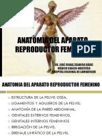 Anatomia Del Aparato Reproductor Femenino 2016