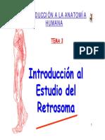 TEMA 3 Retrosoma