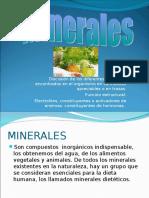Minerales_Clase de Nutrición