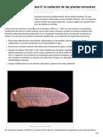 B-log-ia20.Blogspot.pe-evolución de Las Plantas II La Radiación de Las Plantas Terrestres