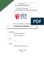PEÑA ALVA, POLO SÁNCHEZ, Práctica 2.docx