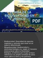 Perdida-de-la-biodiversidad-en-México (1).pptx