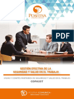 COPASST1.PDF