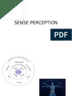 Sense Perception