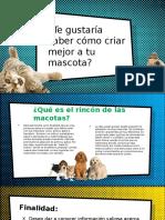 Texto Promocional – El Rincón De Las Mascotas