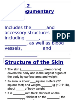 student copy integumentary system 15 16