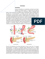 Super Resumen Pancreas
