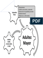 Caracteriticas de La Adultez Mayor