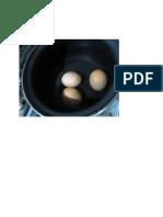 Huevos Zombies Como Hacerlos