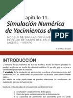Cap 11. Simulación Numérica de Yac de Gas