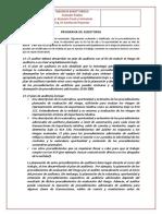 Programa de Auditoria 2015