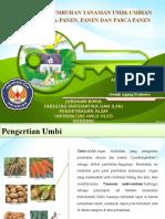 Biokimia Ppangan (Umbi-umbian)