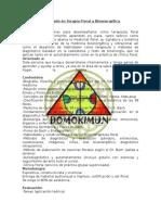 Diplomado en Terapia Floral y Bioenergética