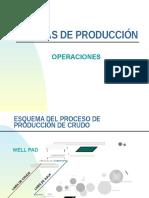 CAPITULO 2E Planta de Producción CPF