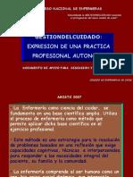G Del C Expresion de Una Practica Profesional Autonoma