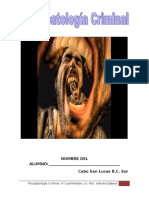 Psicopatologia Crimal