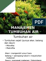 Manajemen dengan tumbuhan