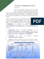 COMPOSICION LIPIDA DE LAS MEMBRANAS CELULARES.docx