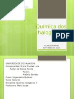 Seminário Qi 2 Halog (1)
