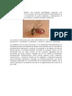 Enfermedad de Carrion.pptx