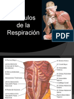 II3. Musculos de la respiracion.pptx