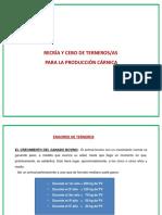 produccia_n_de_carne_en_vacuno.pdf