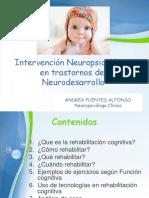 rehabilitacion neuropsicologica en trastornos del neurodesarrollo julio 2016.pdf