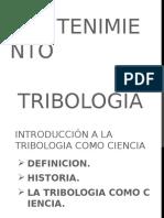 Tribologia Orinal Nike