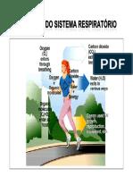 Mecanica Da Ventilacao Pulmonar 2010
