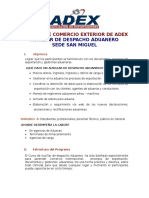 AUXILIAR DE DESPACHO ADUANERO.doc