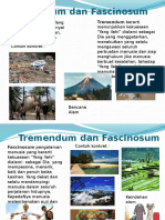 Tremendum Dan Fascinosum