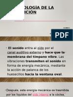Fisiología-de-la-audición-Expo-1.pptx