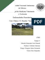 Dx Parasitológico en Ovinos