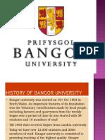 Bangor University -Global Opportunities Consultants