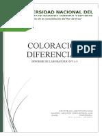 Informe 04_coloración Diferencial