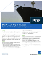 DNV Lay-up Services