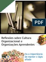 Aprendizagem Organizacional a Importc3a2ncia Da Cultura Organizacional