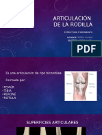 Articulación de La Rodilla - Copia