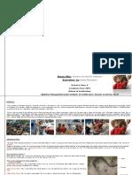 Final Thesis Report_italia Priyanka