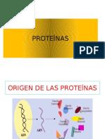 Secion de Cales Proteínas