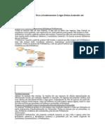 Resumo de Biologia Para Absolutamente Leigos Reino Animalia até Equinodermos.docx