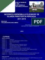 4.-TICU-O.-ANCA-MARIA.ppsx