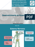 embriologia_do_sistema_nervoso.pdf