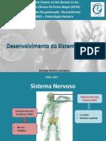 embriologia_do_sistema_nervoso.pdf