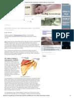 Benjamin (2004) Shoulder Series 2 Tendinitis Supraspinatus