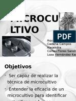 MICROCULTIVO-EXPOSICION.pptx